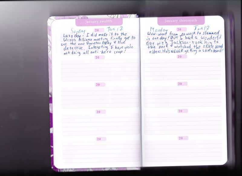 5-year diary for blog